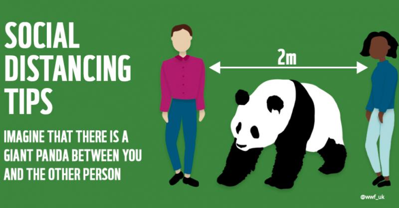 WWFがソーシャルデイスタンシングを絵にするとこう